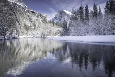 Half Dome rises above the Merced River with white snow and evergreen trees covering the riverbank Yosemite National Park, California.