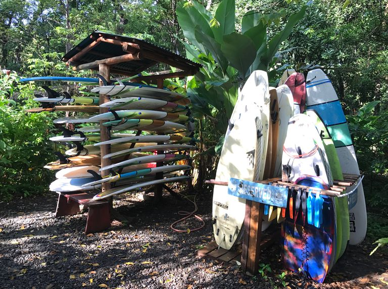 Surf boards in racks near a beach