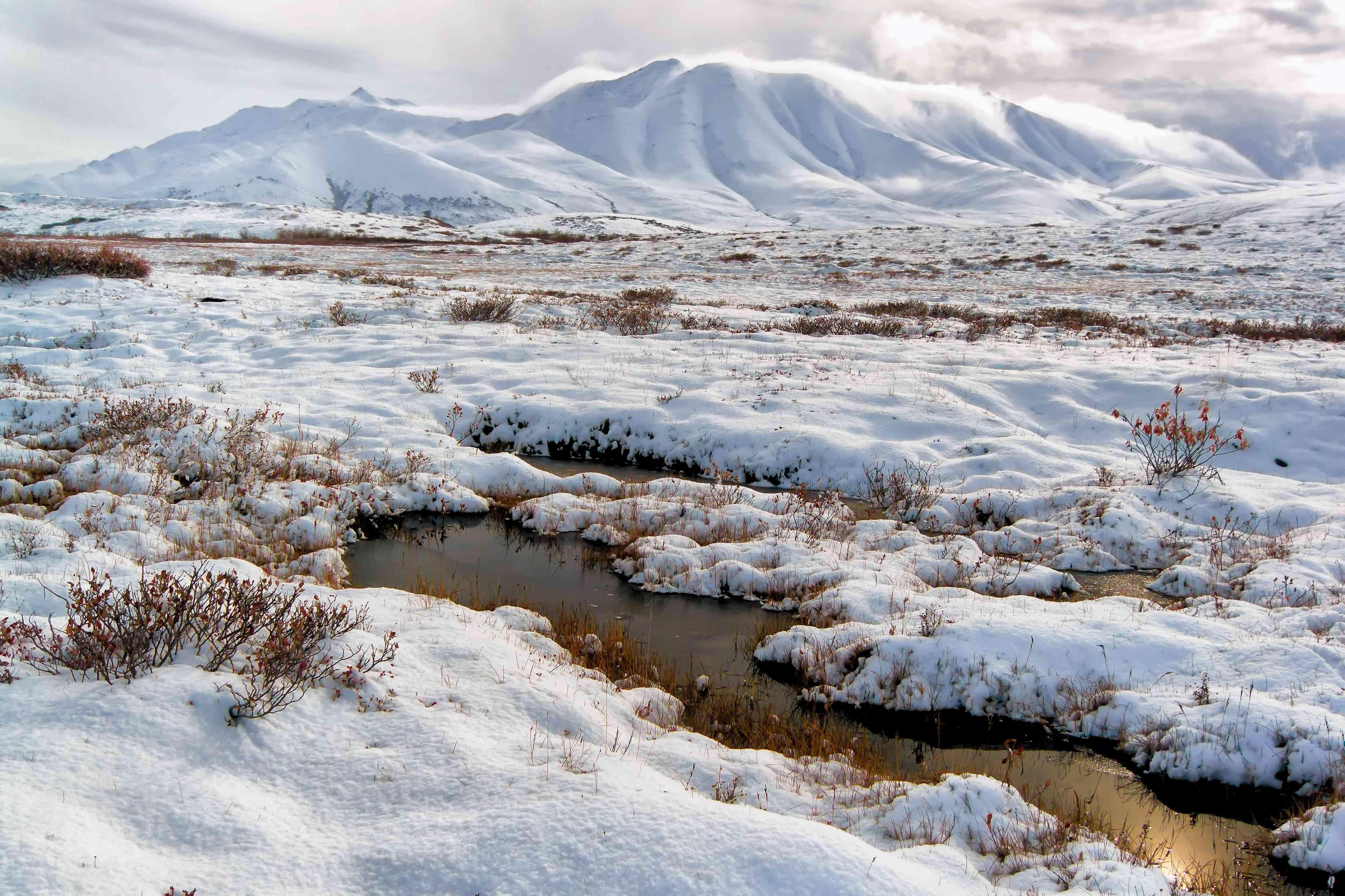 ANWR landscape