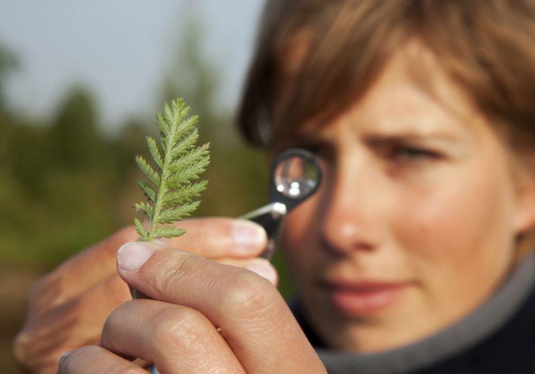 9 mujeres de las que probablemente nunca hayas oído hablar que han hecho historia en la conservación
