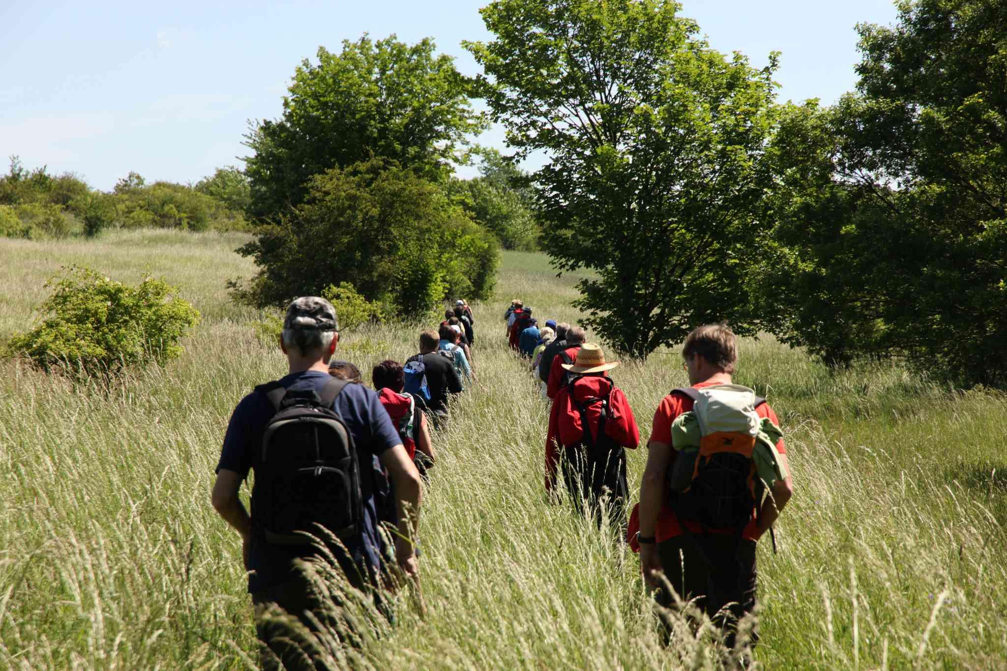 Hiking the green belt