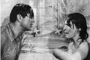 Rock Hudson and Julie Andrews arguing in the shower