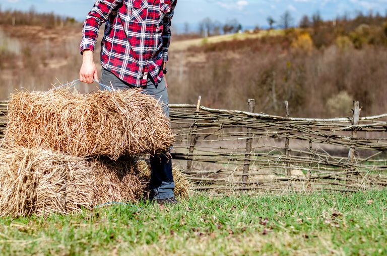 A man in plaid holds a bale of compost hay in the countryside.
