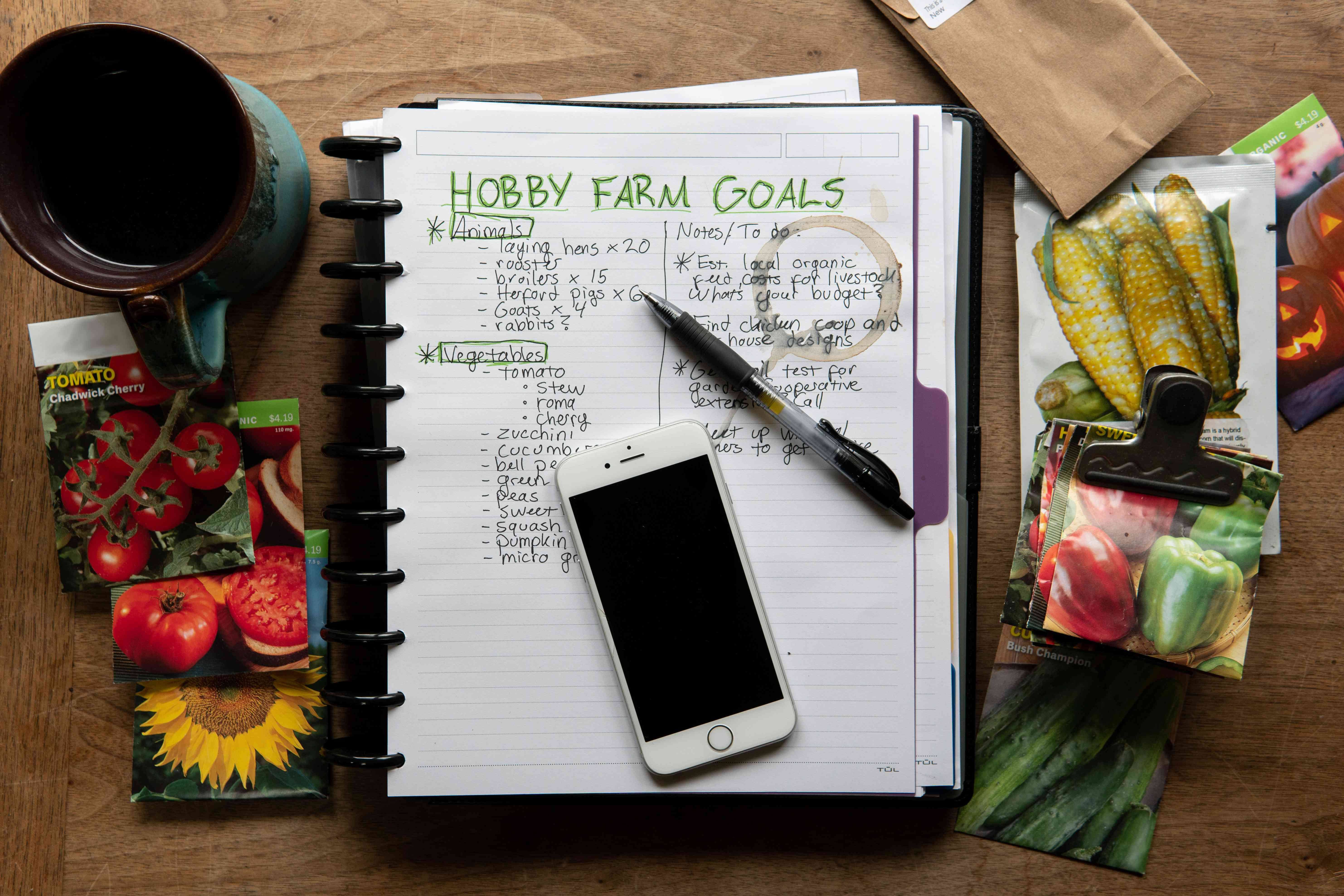 overhead shot of notebook with hobby farm goals surrounded by seeds