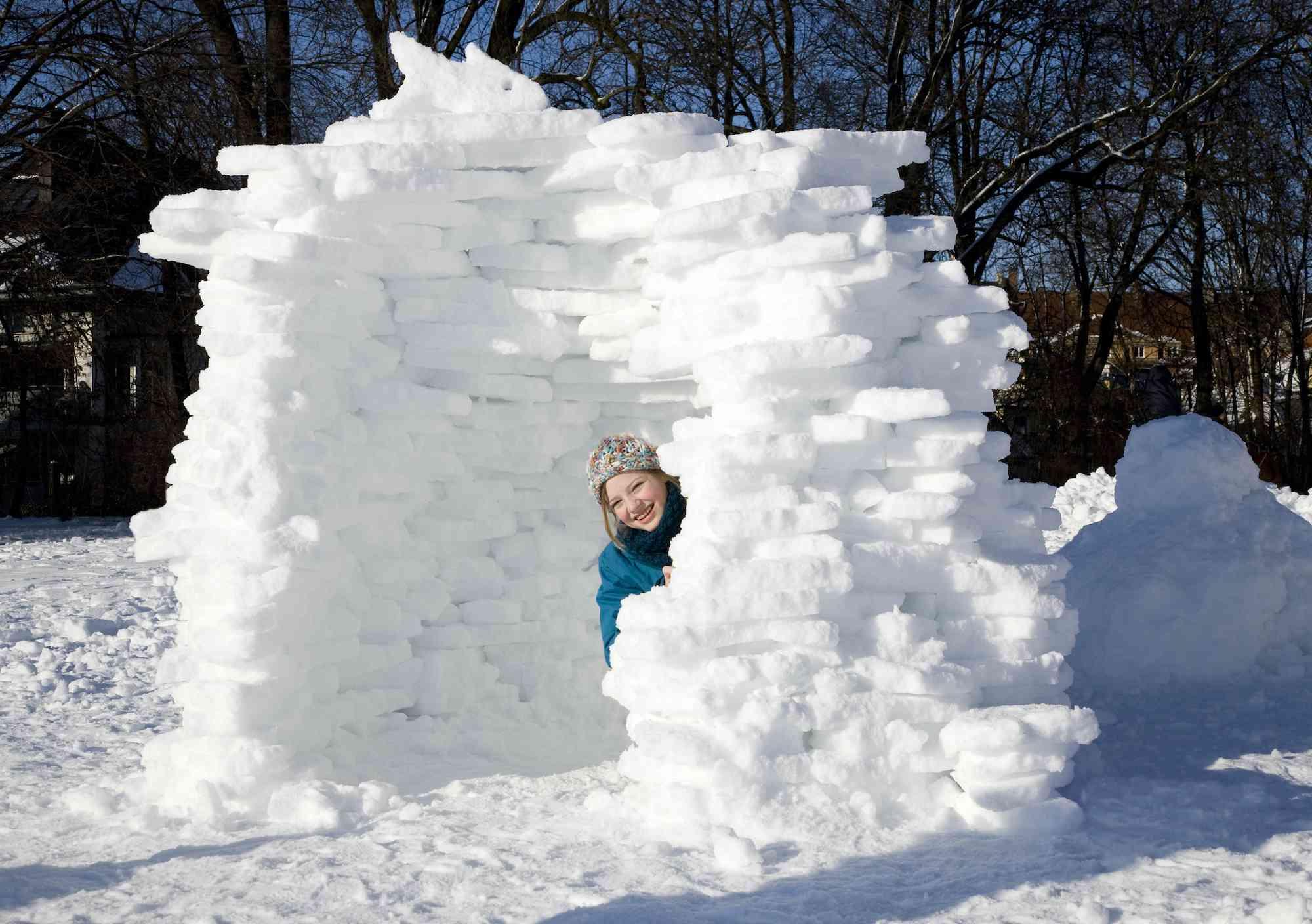 ice fort