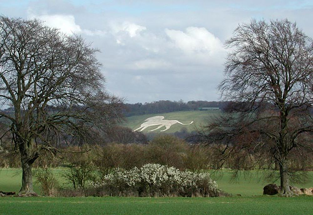 Chalk carving of Whipsnade White Lion on the green pasture of a hill surrounded by trees and flowers under a blue sky with white clouds