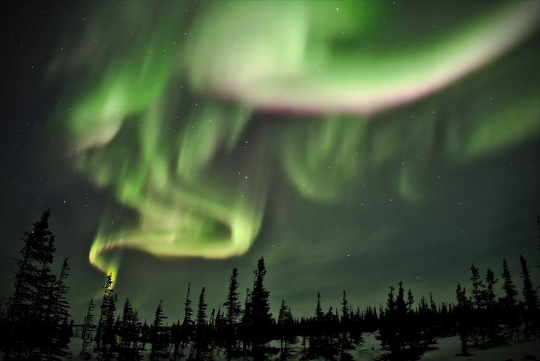 Transmite en vivo la aurora boreal directamente desde Manitoba, Canadá