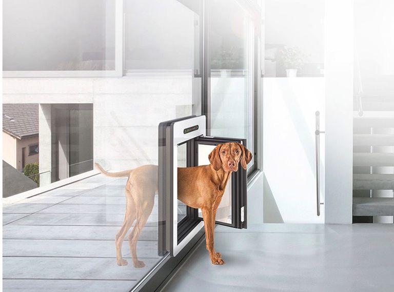 Una nueva puerta conduce desde la caseta del perro a la Passivhaus