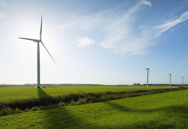 Row of wind turbines in front of sunrise in field landscape, Rilland, Zeeland, the Netherlands