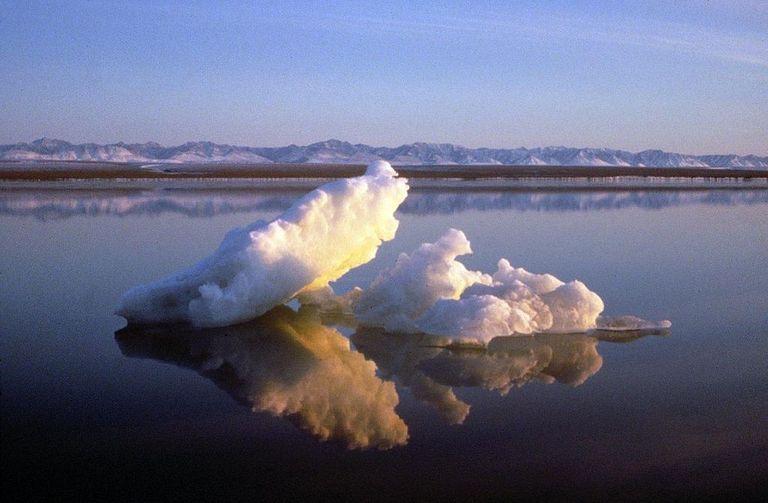 El video muestra la impresionante pérdida del hielo marino del Ártico más antiguo en los últimos 30 años