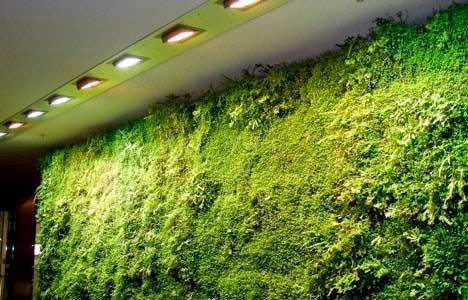 living wall photo