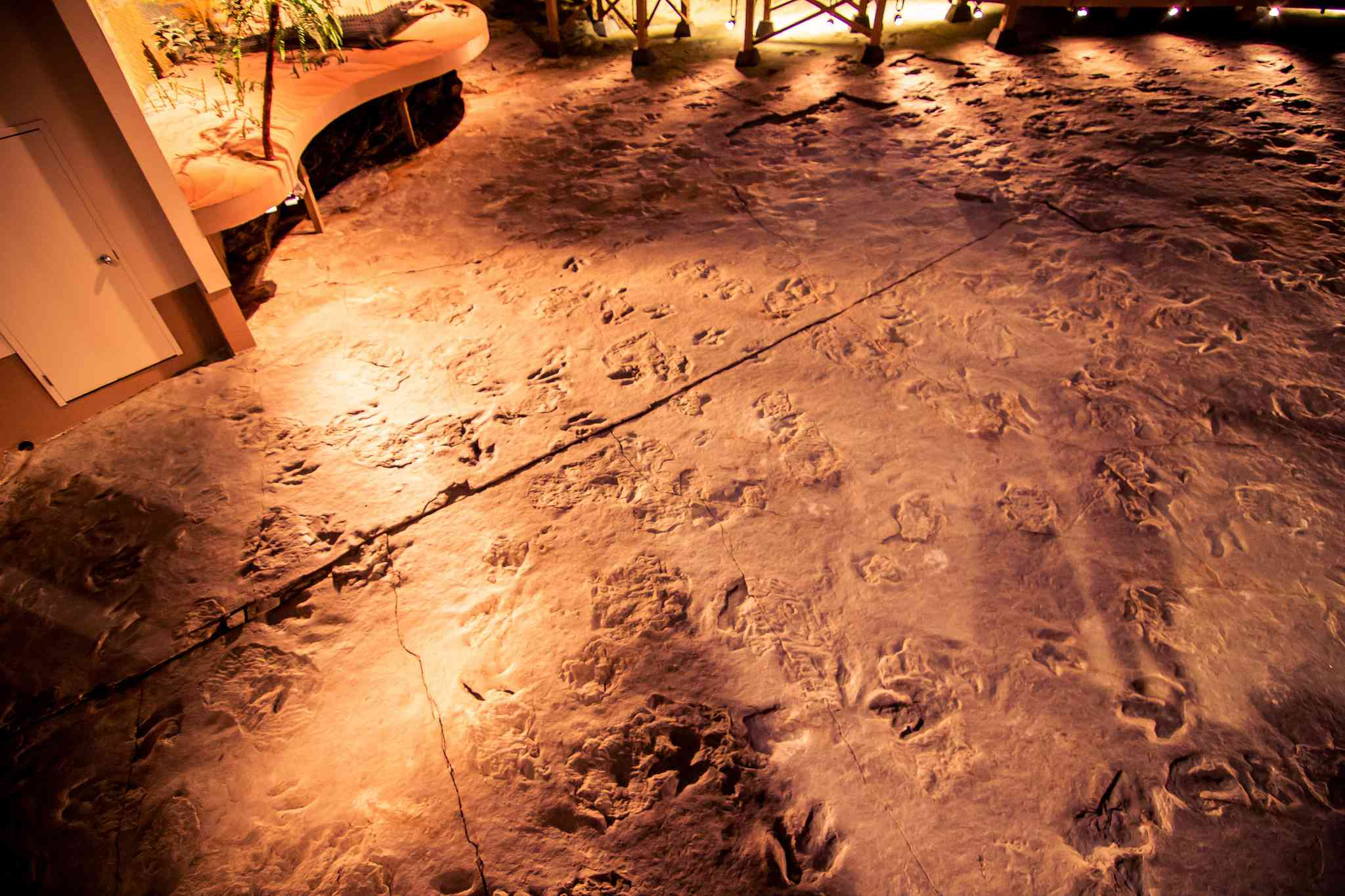 The ground in a museum exhibit covered with dinosaur tracks