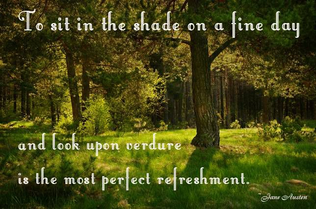 To sit in the shade on a fine day and look upon verdure is the most perfect refreshment. Jane Austen