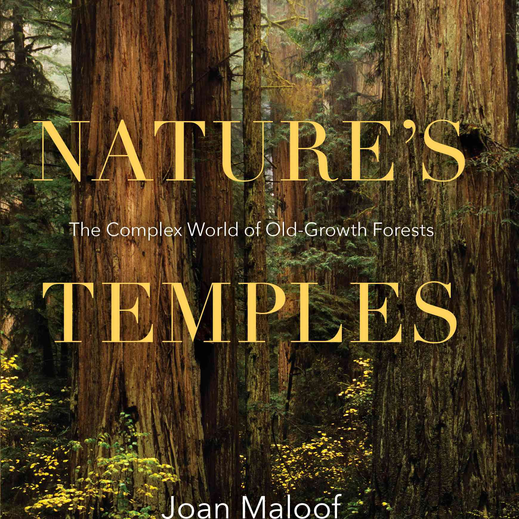 'Nature's Temples' by Joan Maloof book cover