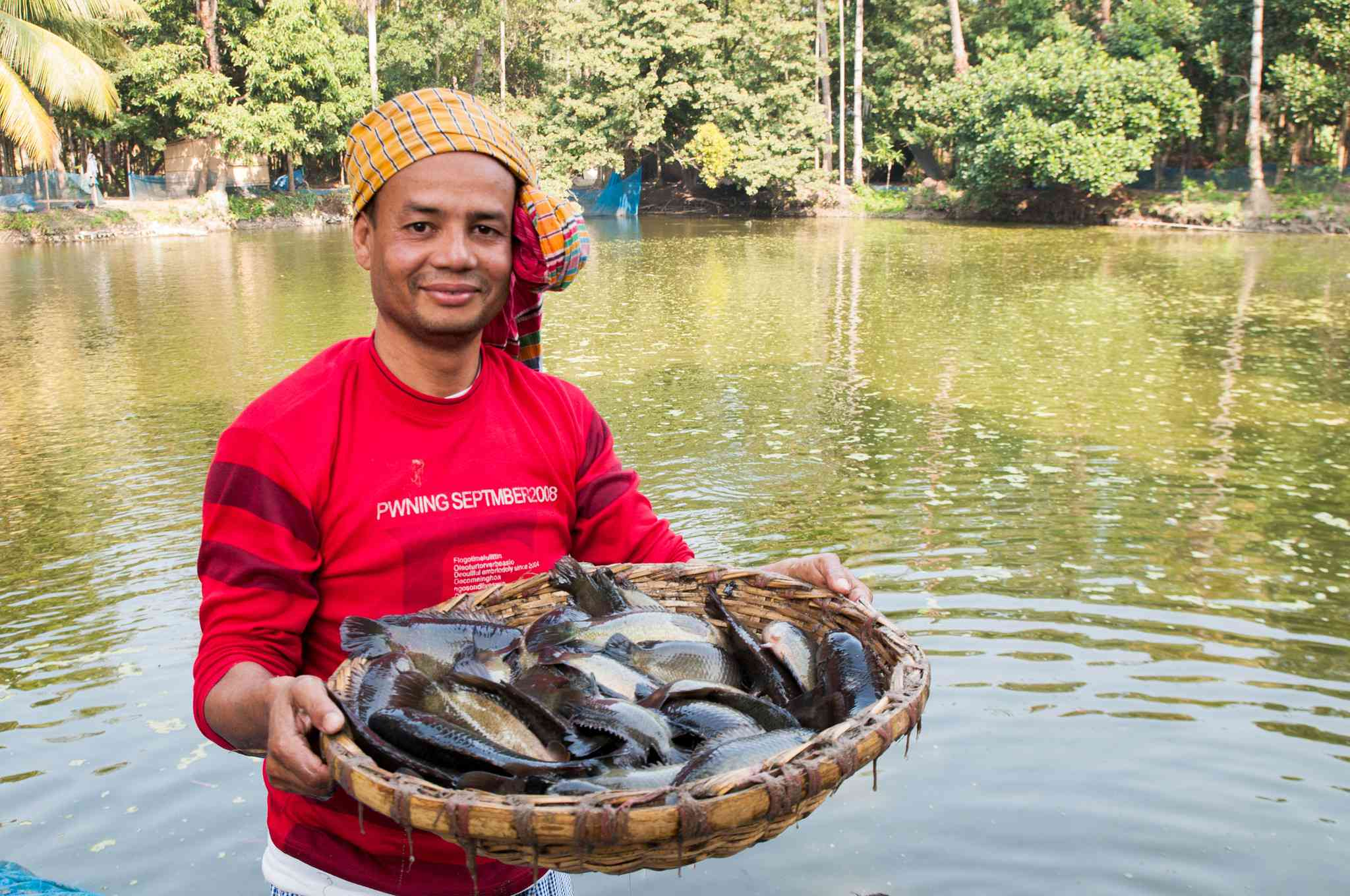 Farmer holding Climbing fish from his pond.