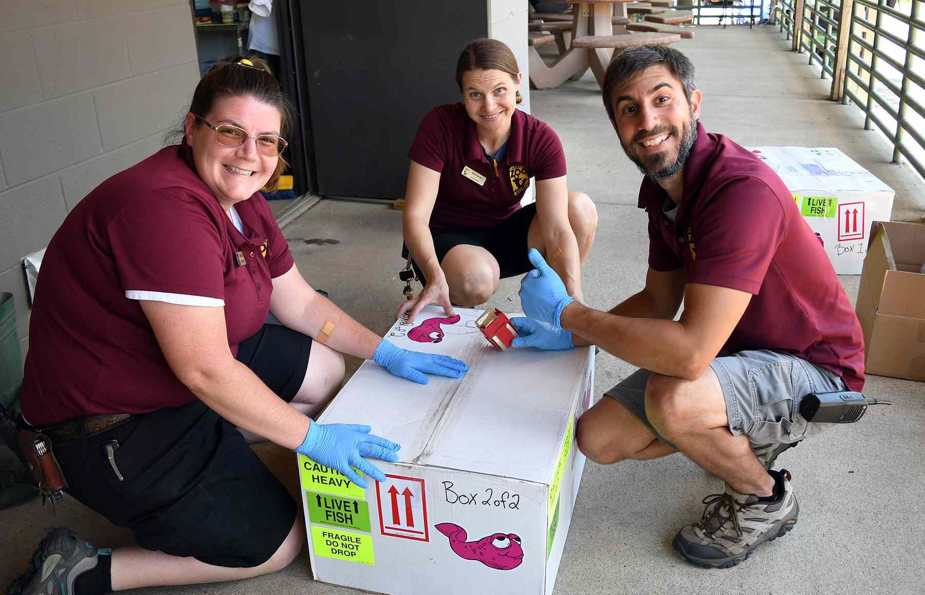 Nashville Zoo employees package tadpoles