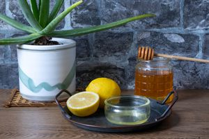 ingredients shot with aloe vera houseplant, cut lemons, and jar of honey with wooden dipper
