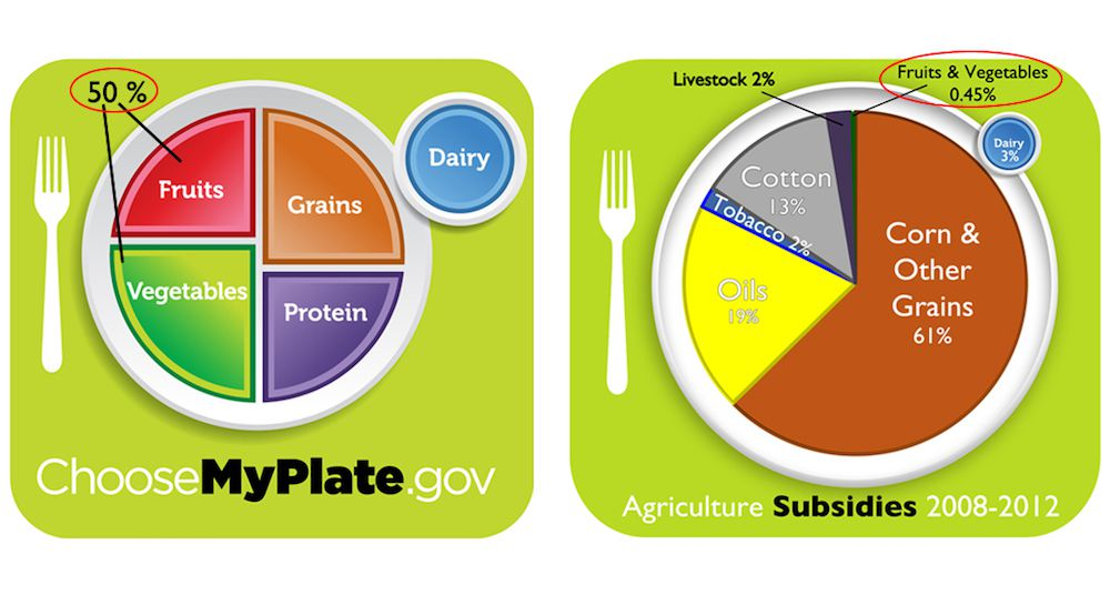 My Plate & subsidies comparison