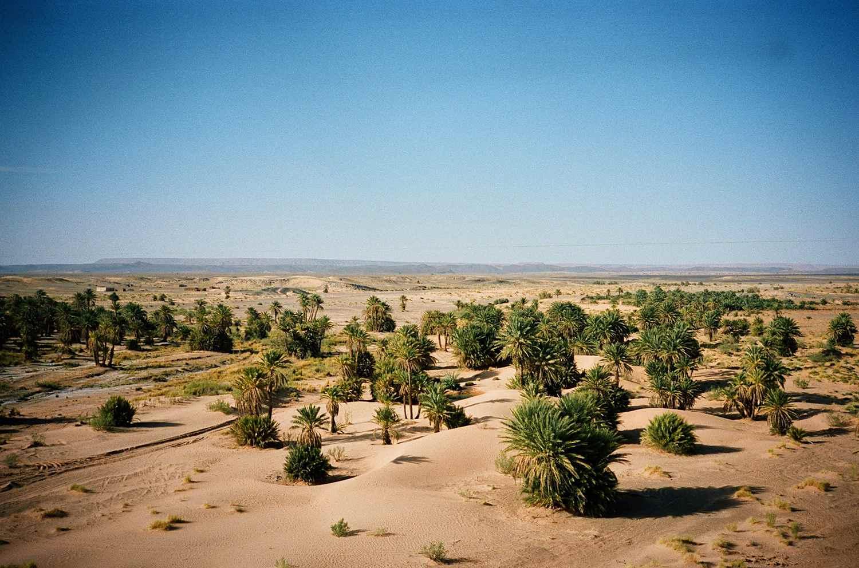 Desert Against Clear Blue Sky