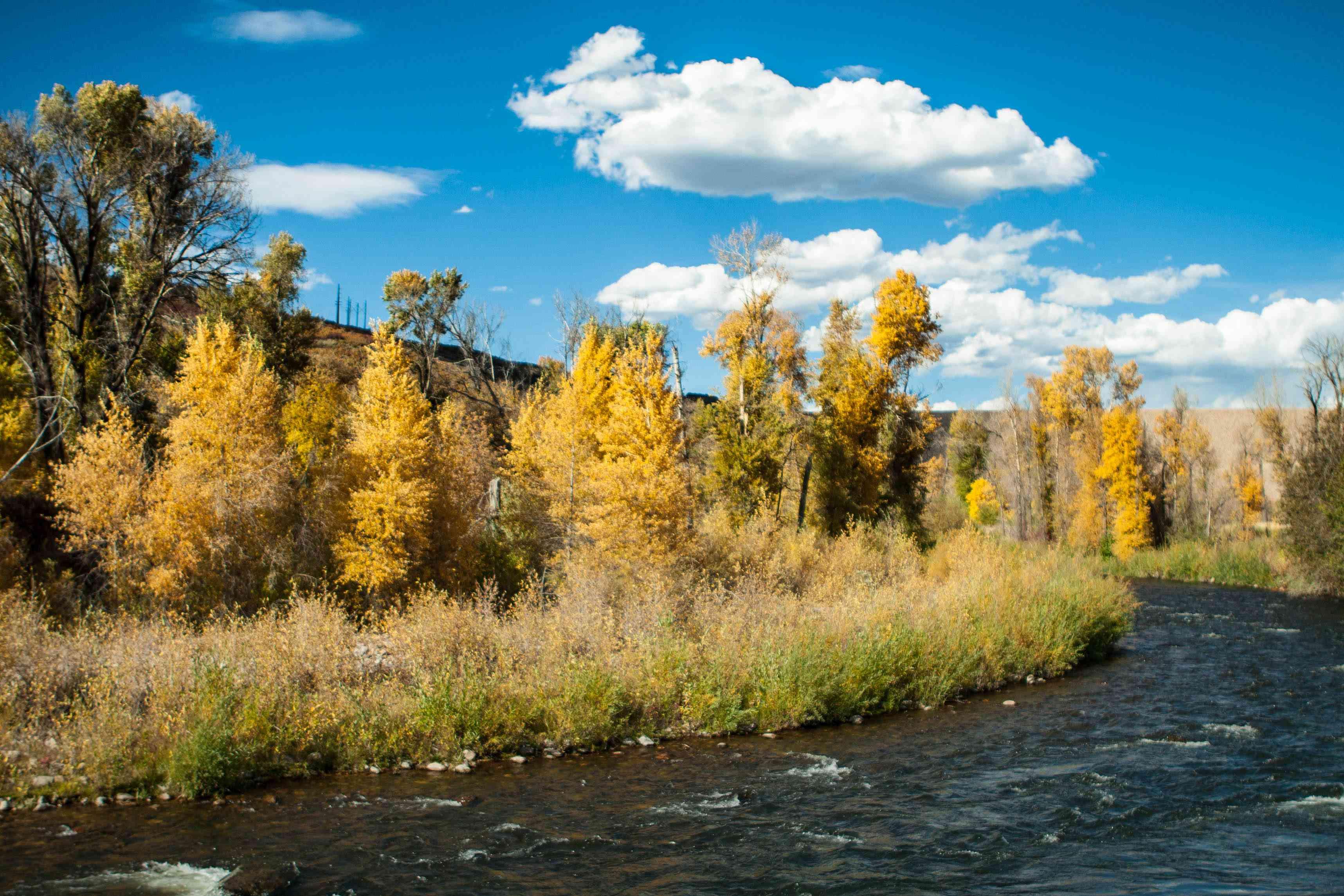 Provo River in North America