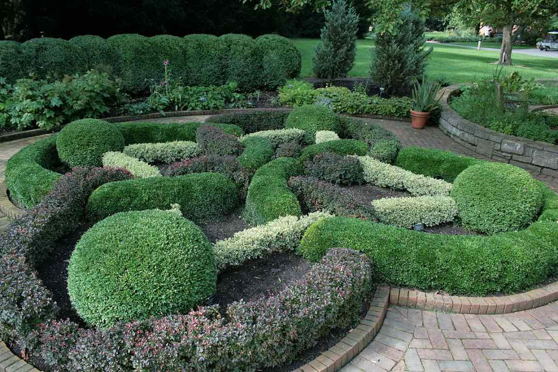 A garden of manicured bushes in the shape of a Celtic knot
