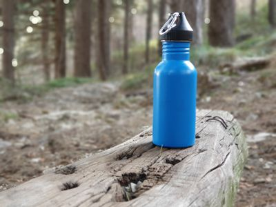 Aluminum water bottle sitting on the end of a log in a forest