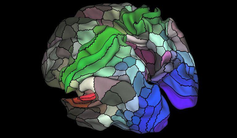 Este nuevo mapa cerebral te dejará boquiabierto