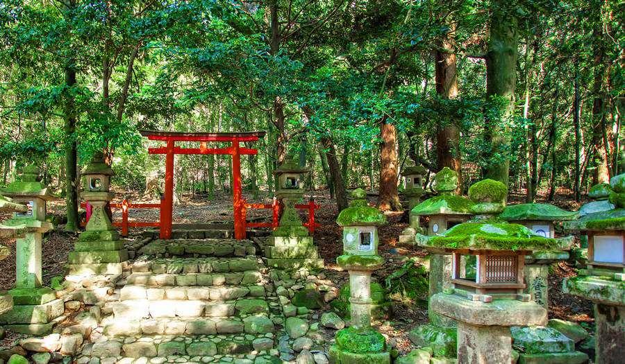 Kashuga Taisha Shrine