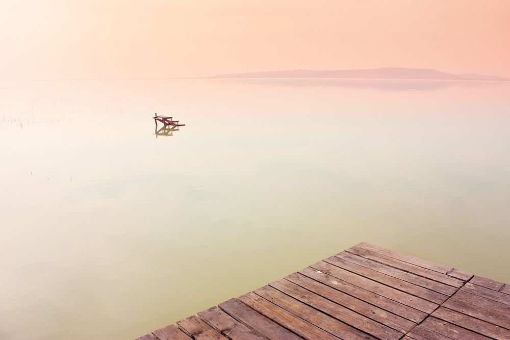 Geometry is an important element in a masterful minimalist landscape.