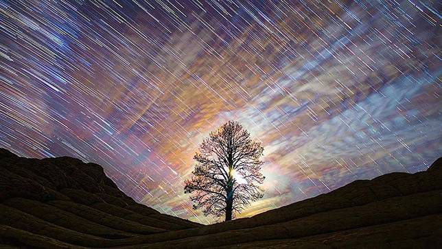 time lapse photos of stars highlight a distant tree