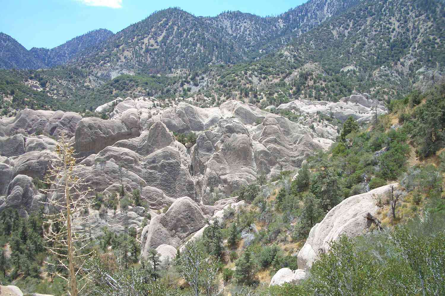 Looking down into the canyon with the limestone formations of Devil's Punchbowl