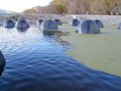 half-submerged bio domes