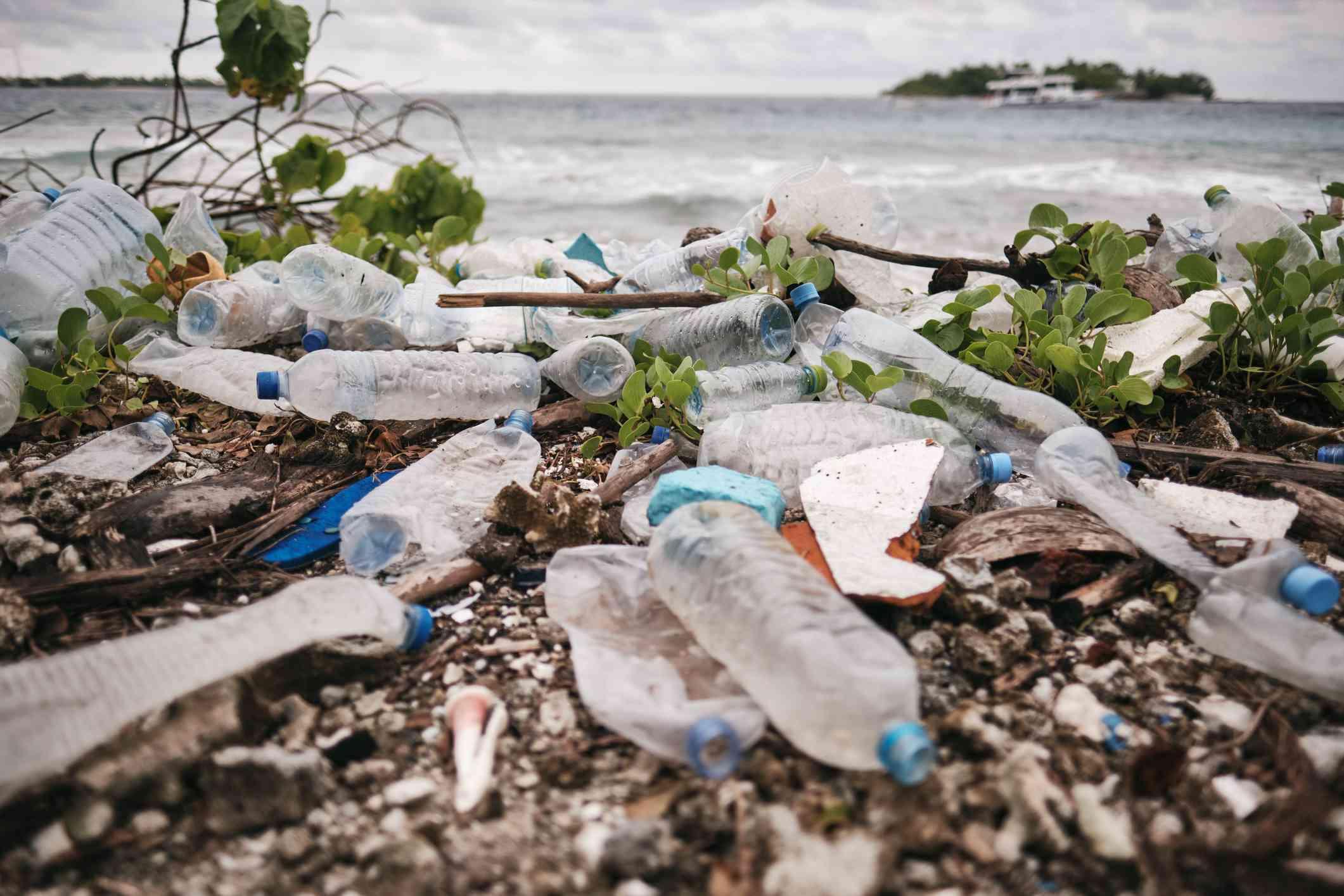 Plastic water bottles littered on the beach.