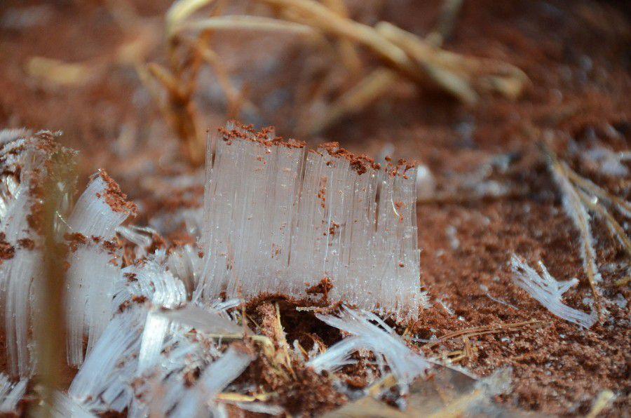 needle ice