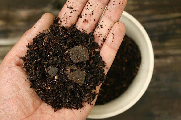 testing potting soil quality before planting