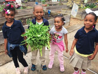 preschool farmers