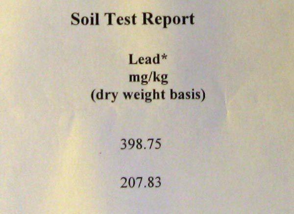 soil lead test report