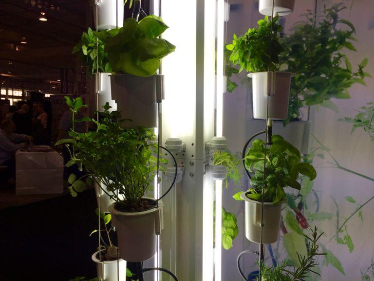 Nutritower es una granja vertical para su pequeño condominio
