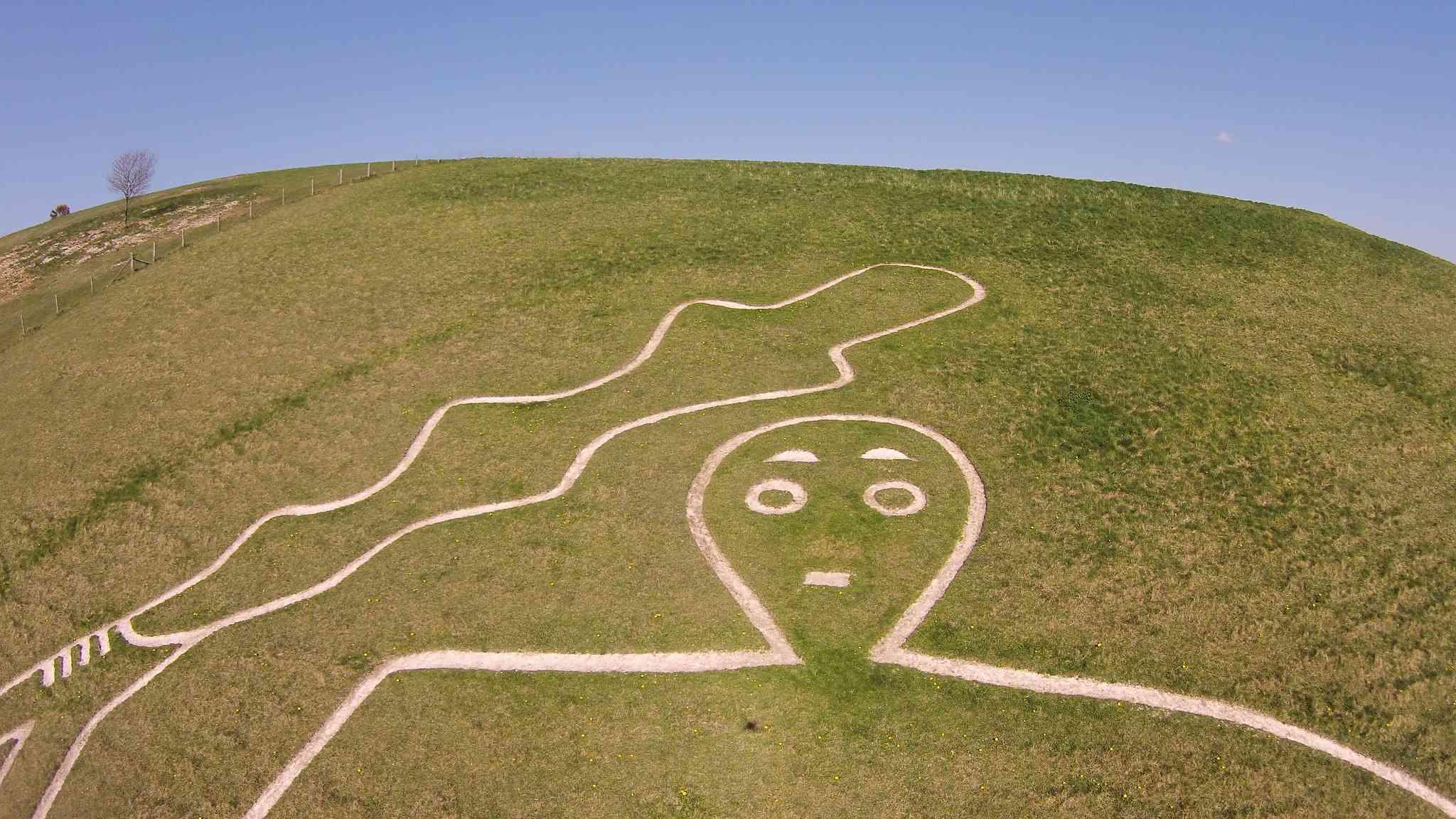 Close-up of head and shoulders of of Cerne Abbas Giant hill figure holding a large club on a green hill beneath a bright blue sky