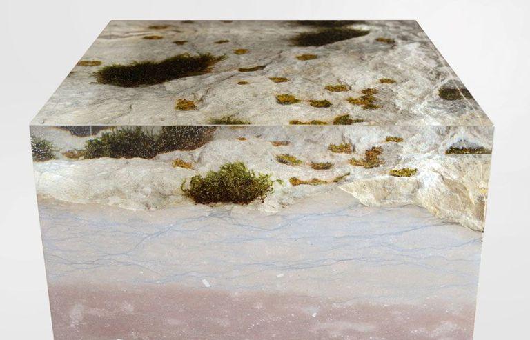 Los elegantes muebles cubiertos de musgo para los amantes de la naturaleza se conservan con resina