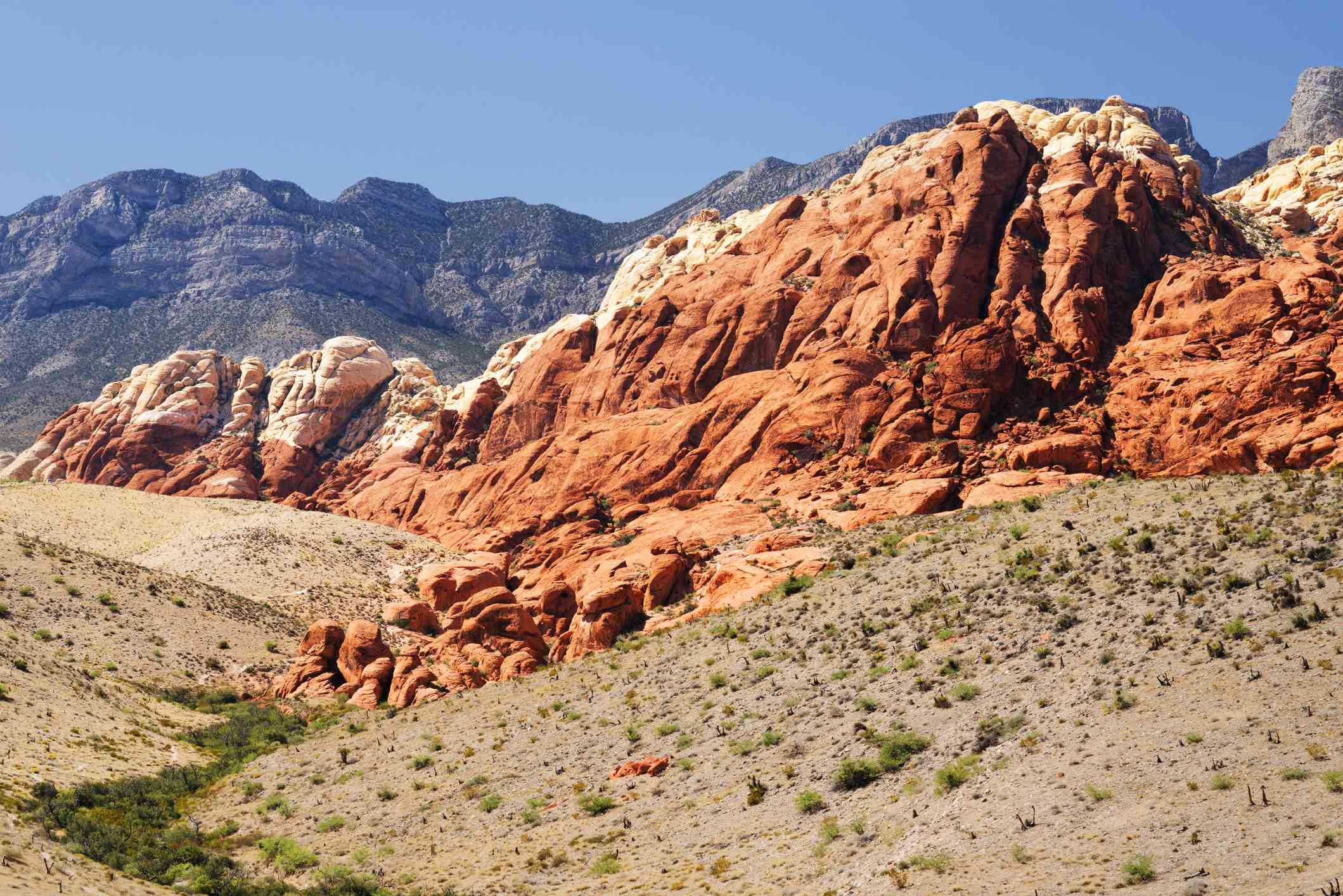 The fire-red rocks of Turtlehead Mountain