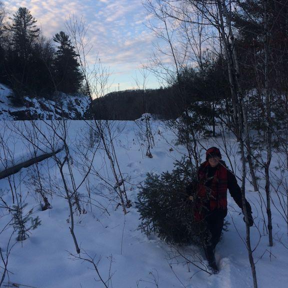 mom pulling tree