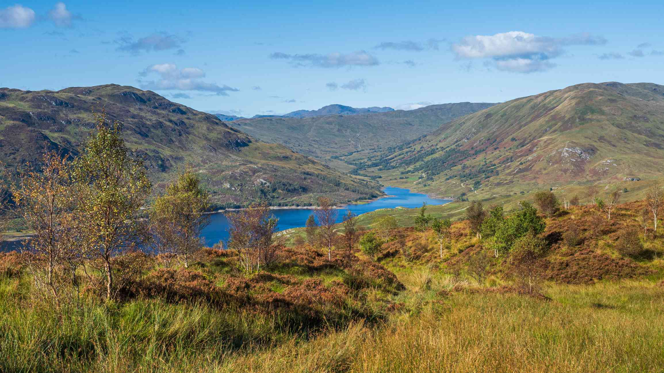 Glen Finglas, the largest ancient woodland in the UK, spans over 12,000 acres in Scotland