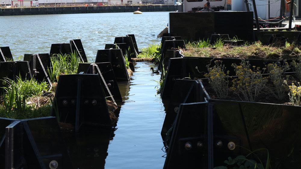 Wildlife canal at Recycled Park, Rottedam