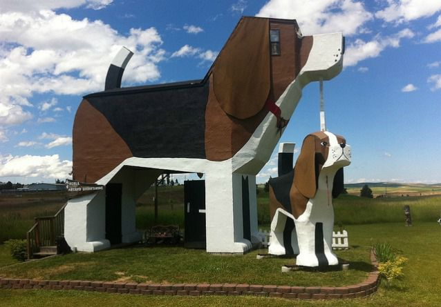two dog shaped building