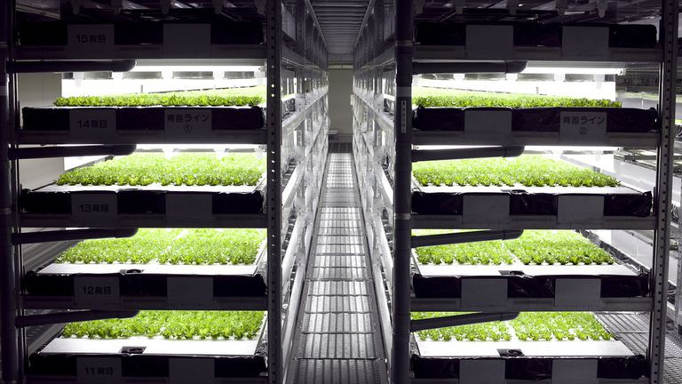 Spread vertical farm