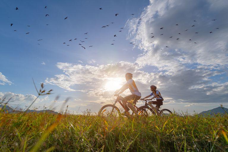 riders on mountain bikes with birds overhead