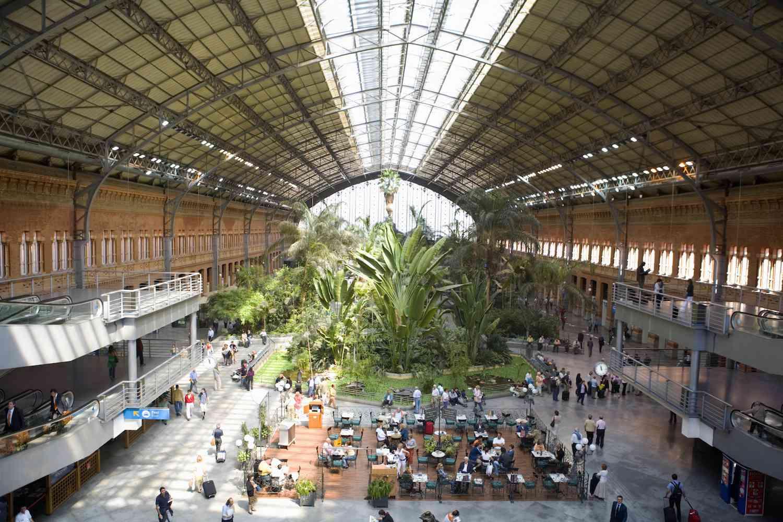 The indoor tropical garden of Atocha Station in Spain