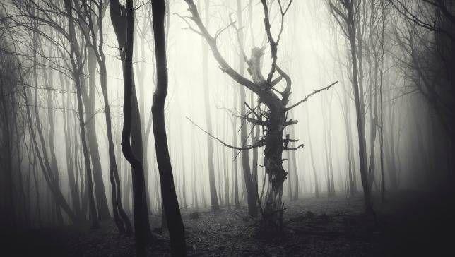 12 películas de terror que revelan el lado malo de la madre naturaleza