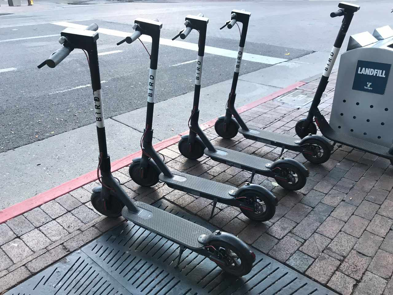 parked scooters in tempe